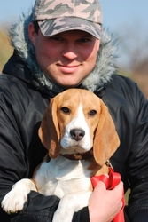 Дрессировка собак в Харькове. Доступно. Профессионально